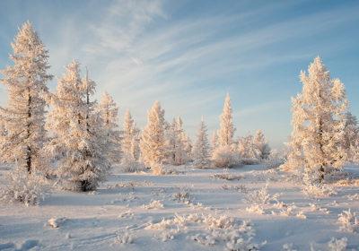энергии декабря астрология
