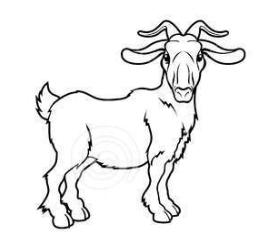 коза восточный гороскоп 2017