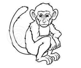 обезьяна восточный гороскоп 2017