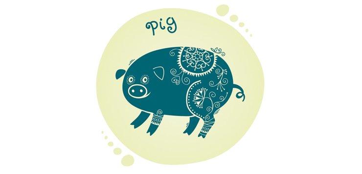 китайский зодиак свинья