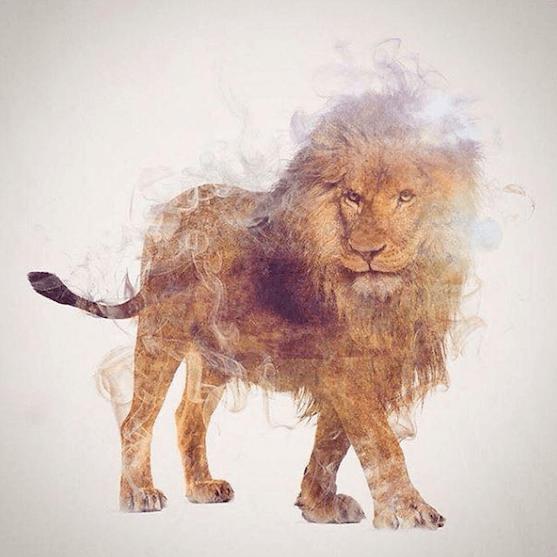 тотемное животное лев