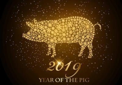 прогноз на год свиньи